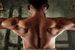 Muscle hypertrophy: Science behind Muscle Growth